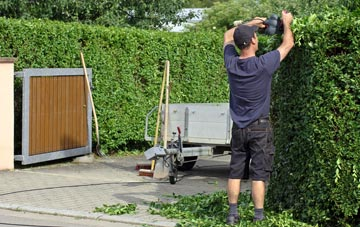 professional Bangor hedge cutting services