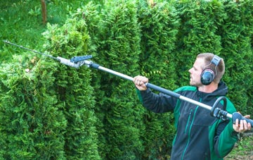 Bangor hedge trimming costs