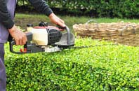Bangor hedge trimming services