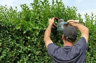 free Bangor hedge trimming quotes